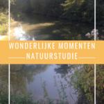 Wonderlijke momenten – Migraine, natuurstudie en Ilse Heylen