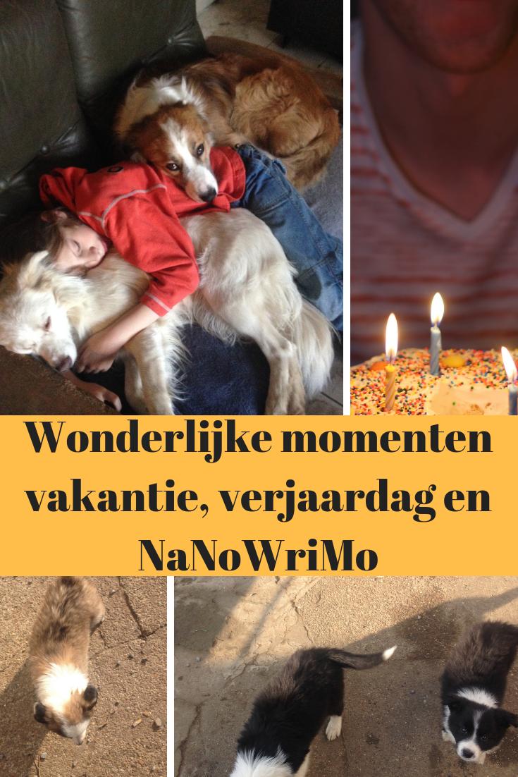 Wonderlijke Momenten Vakantie Verjaardag En Nanowrimo